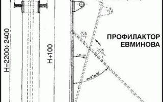 Упражнения на доске Евминова при межпозвоночной грыже: эффект, комплекс упражнений, противопоказания и изготовление, отзывы врачей