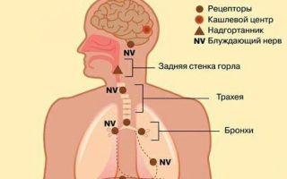 Кашель на нервной почве: причины, симптомы и лечение
