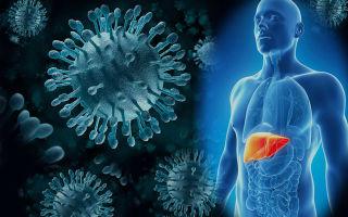 Как предупредить вирусный гепатит в