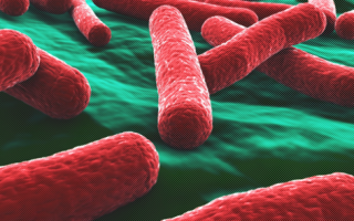 Туберкулома легких: что это такое, какие последствия и заразна ли она для окружающих