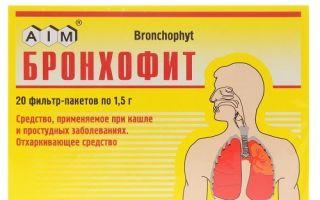 Бронхофит: основные характеристики и инструкция по применению