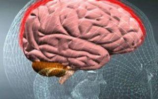 Туберкулез мозга: симптомы, признаки, диагностика и как передается