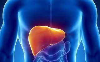 Туберкулез печени: как передается, симптомы и первые признаки