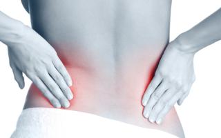 Склероз почек: стадии заболевания и методы лечения