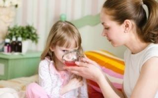 Калина от кашля — как приготовить, рецепты для детей и взрослых