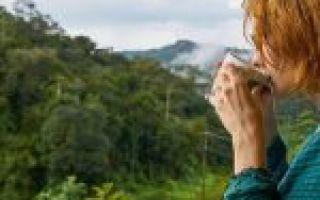 Чем лечить сухой кашель с температурой — быстро выздороветь легко