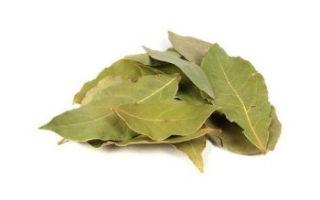 Лавровый лист при лечении цистита: способы применения