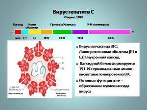 Причины ошибочного или ложноположительного анализа на гепатит C и B