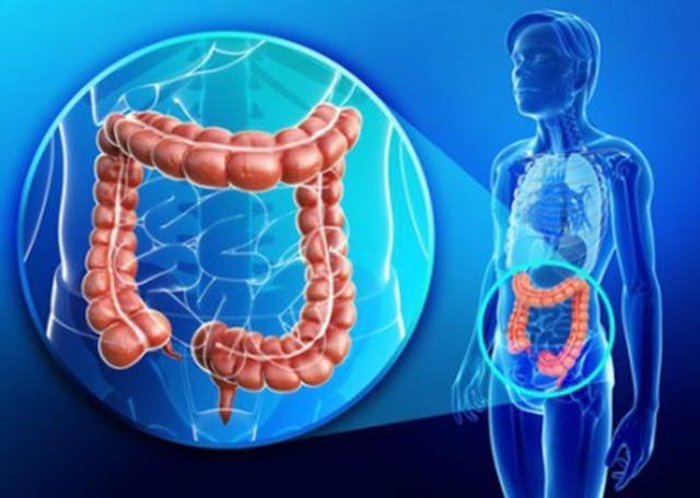 Что такое портальная гипертензия и как ее лечить