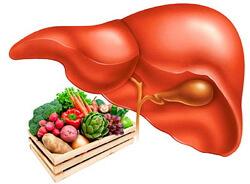 Эффективные аптечные лекарства против стеатоза печени
