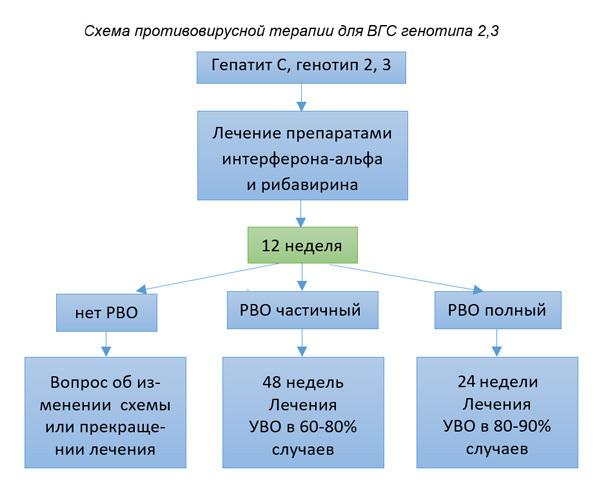 Гепатит С генотип 2: что это значит и как лечат болезнь