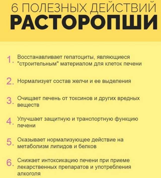 Список лучших препаратов с экстрактом пятнистой расторопши