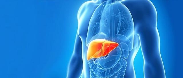 Всё, что нужно знать о гепатите А: симптомы, способы заражения, профилактика