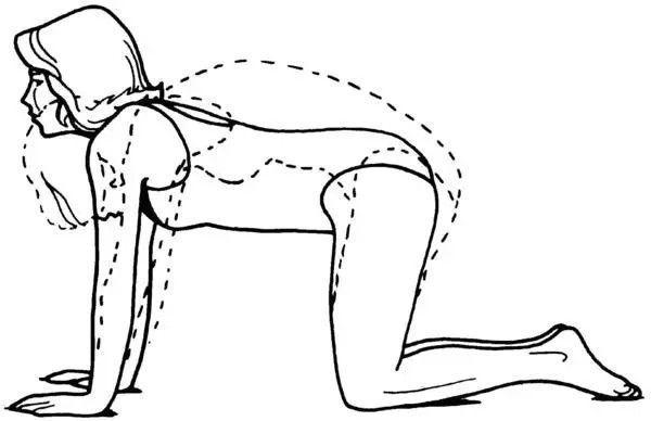 Гимнастика при грыже пояснично-крестцового отдела