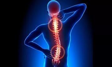 Упражнения на доске евминова при межпозвоночной грыже: эффект, комплекс упражнений, противопоказания, изготовление, отзывы