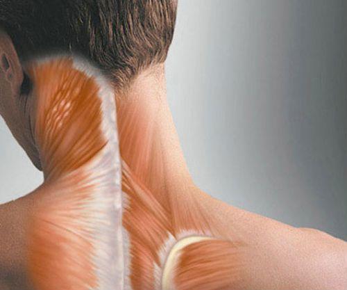 Иглоукалывание при грыже позвоночника: лечение,профилактика, отзывы