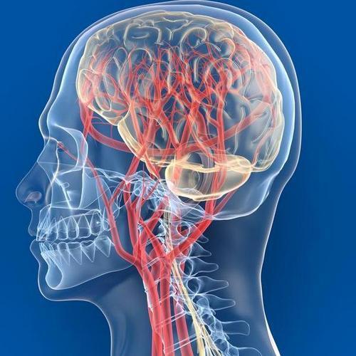 Spondiloza ( Discartroza ) | Hipocrat Tratament cu artroză crovertebrală c5