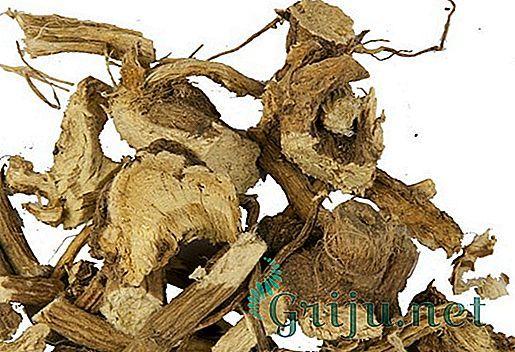 Лечение паховой грыжи народными средствами: заговор