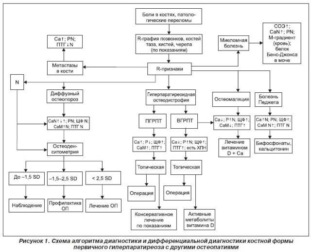 Симптомы и лечение гиперпаратиреоза