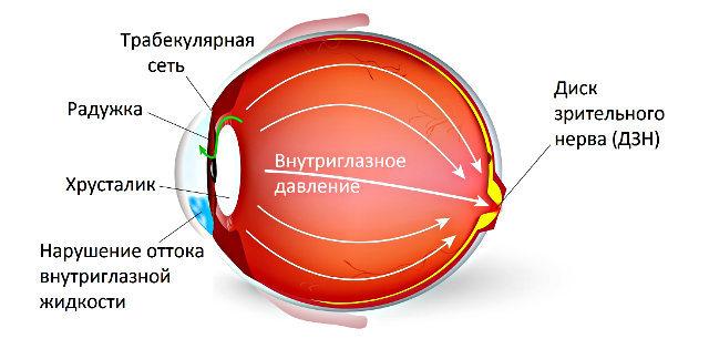 Глазные капли Траватан: инструкция по применению, цена, аналоги и отзывы
