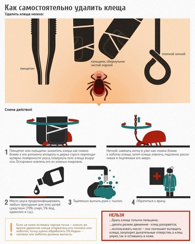 Симптомы и лечение энцефалита