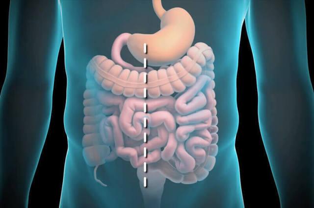 Пищевые добавки негативно влияют на состояние кишечника