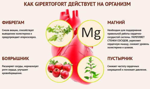 Гипертофорт: цена, инструкция по применению, отзывы врачей, купить в аптеке