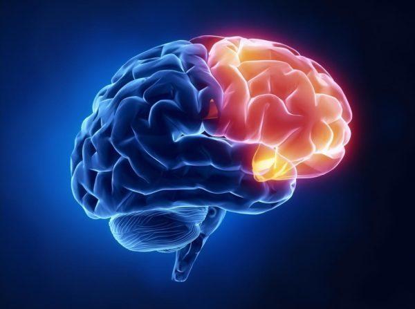 Глиобластома головного мозга: что это такое, продолжительность жизни, симптомы олигодендроглиомы