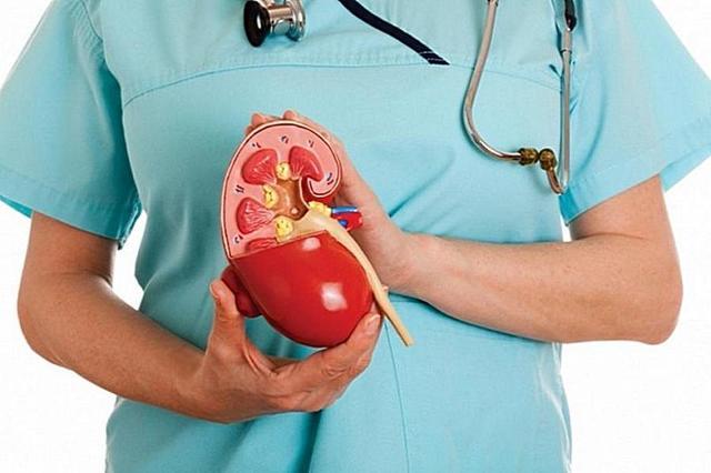 Протеинурия: при беременности, как сдавать суточную протеинурию, норма, альбуминурия