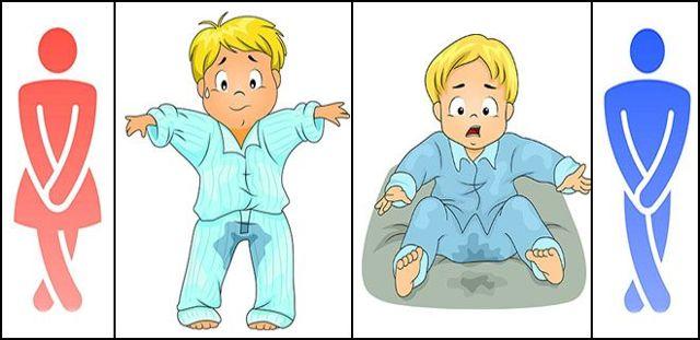 Осложнения цистита: лечение и профилактика заболеваний мочевого пузыря