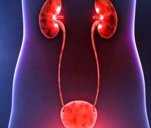 Солевой диатез почек: причины и симптомы и лечение