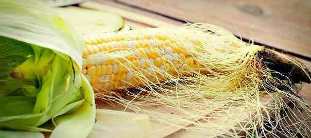 Кукурузные рыльца: как заваривать для лечения заболеваний почек