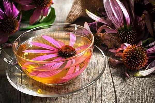 Овес для почек: полезные свойства, рецепты для лечения и профилактики
