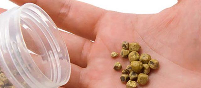 Камни в мочевом пузыре: лечение и возможные осложнения