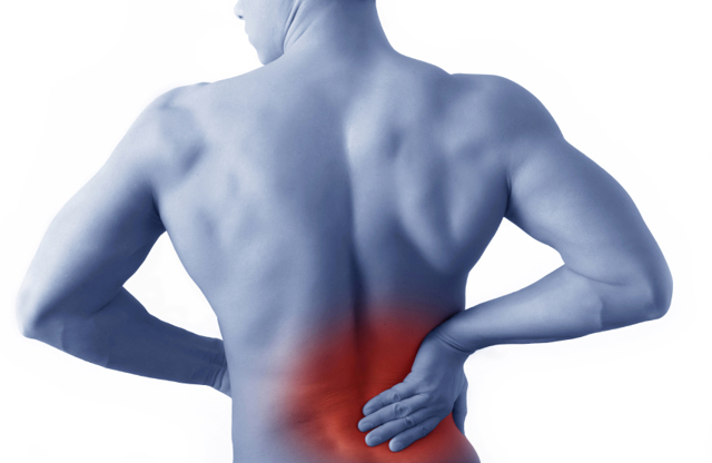 Фиброз почек: что это такое, почему возникает и как его лечить