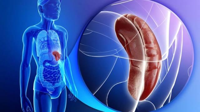 Надпочечниковая недостаточность: симптомы и диагностика