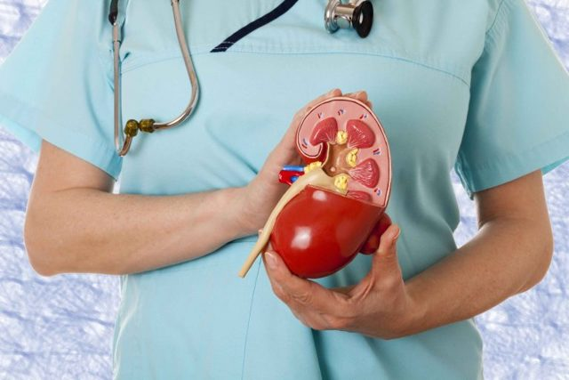 Амилоидоз почек: симптоматика заболевания и диагностика