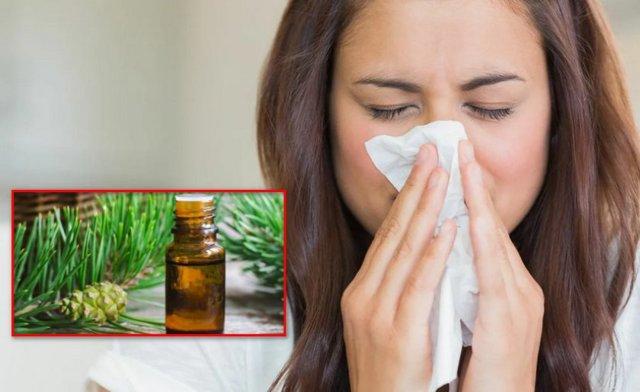 Пихтовое масло от кашля: лечебные свойства и действие веществ