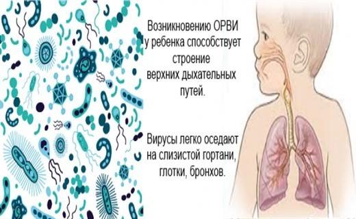 Вирусная пневмония у детей: симптомы, лечение и профилактика