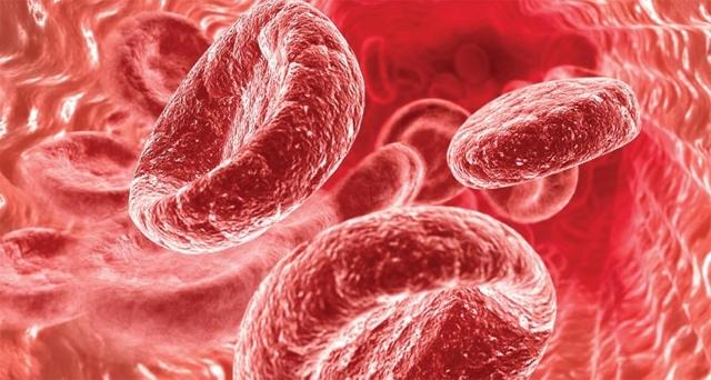 Медведка от туберкулеза легких: рецепт лекарства и как принимать