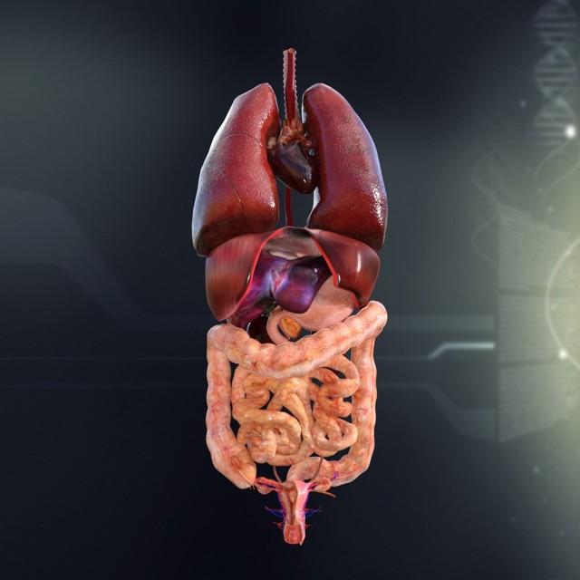 Внелегочный туберкулез: симптомы, формы и локализация