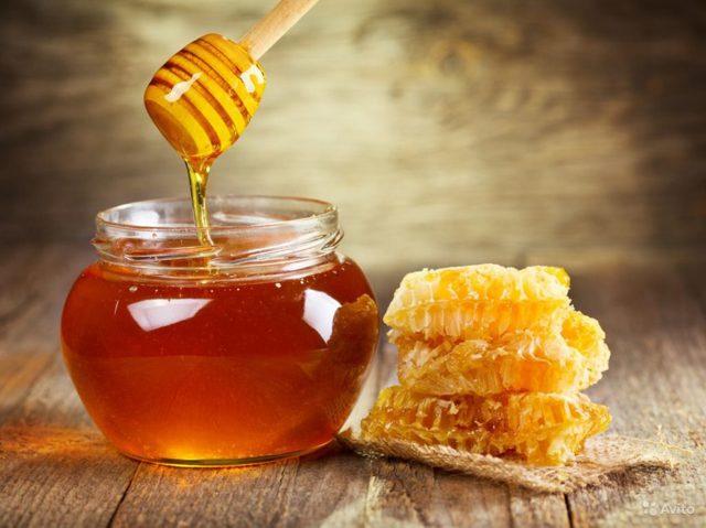 Мед и лимон от кашля: рецепт приготовления и противопоказания