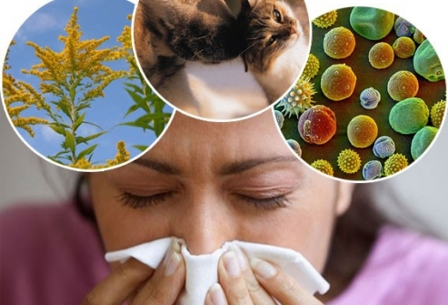 Атопическая бронхиальная астма: причины появления и профилактика