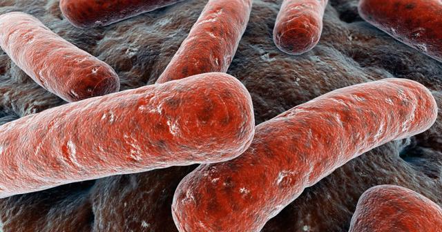 Туберкулез мочеполовой системы или урогенитальный туберкулез у мужчин и женщин, симптомы