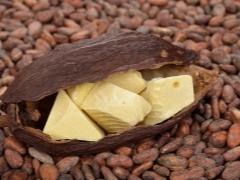 Масло какао от кашля: как принимать детям и при беременности