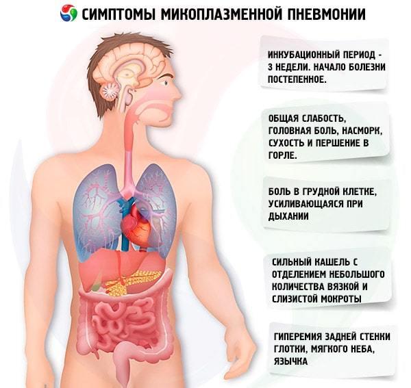 Микоплазма и пневмония: причины заболевания, симптомы и лечение