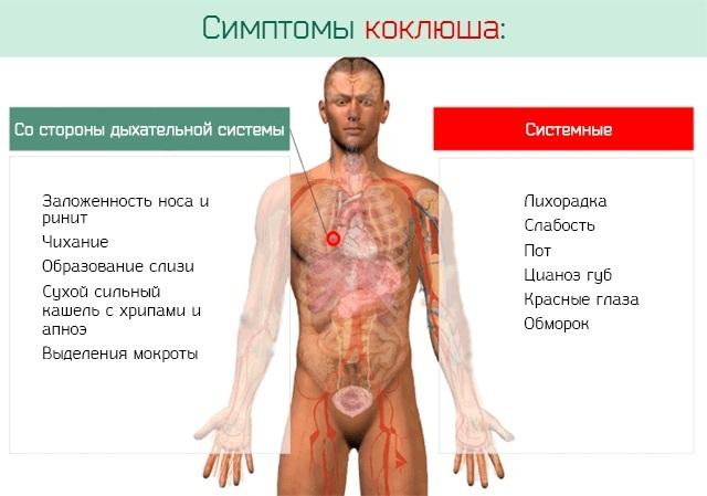 Сироп и таблетки от кашля с сальбутамолом: принцип действия