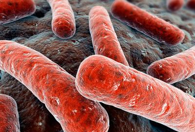 Реакция Манту или вираж туберкулиновой пробы, код по МКБ 10