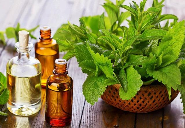Эфирные масла от кашля: какое масло выбрать, процедуры