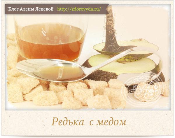Редька с медом от кашля: полезные свойства и рецепт
